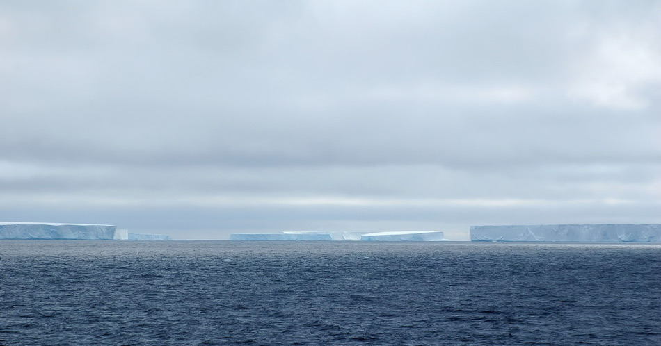 Abgebrochene Teile der Eisschelfe treiben als Tafeleisberge noch jahrelang im Südpolarmeer und düngen dabei den umliegenden Ozean mit Süsswasser und Nährstoffen. Erst nach vielen Jahren sind die Eisgiganten weggeschmolzen. Bild: Michael Wenger