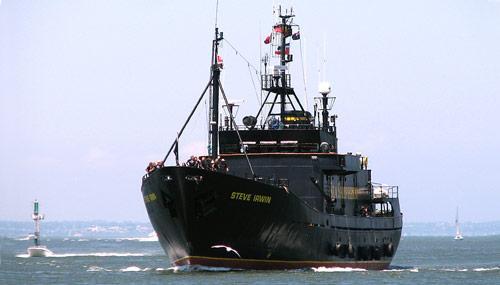 MV-Steve-Irwin