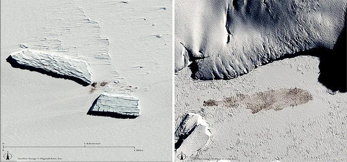 Anhand der dunklen Verfärbung auf dem Eis sind die Kolonien aus dem Weltall sicher zu erkennen.