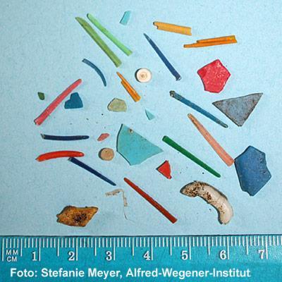 Diese Sammlung kleiner Plastikreste gibt einen ersten Überblick über die Formenvielfalt des Mikromülls. Im Vergleich zu den allerkleinsten Partikeln sind die hier abgebildeten Beispiele jedoch noch wahre Riesen.