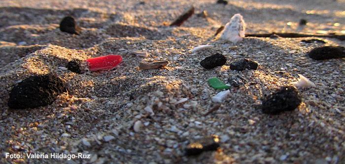 Rot, grün, weiss - woher die Mikroplastikpartikel stammen, lässt sich nur schwer ermitteln. Die meisten gelangen als sogenannte Plastikpellets ins Meer. Andere, meist noch viel kleinere Objekte werden in Peelings oder Autopolituren als Scheuermittel verwendet und am Ende über das Abwassersystem und die Flüsse in das Meer getragen.