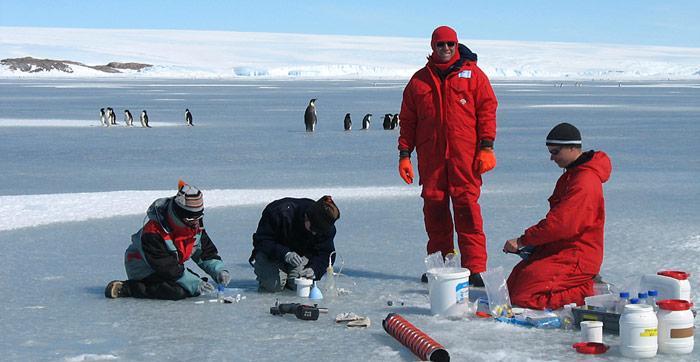 Die Forscher des AWI entdeckten die Kristalle auf zwei Antarktis-Expeditionen in den Jahren 2006 und 2007. Meereisprobennahme auf dem Festeis vor der Französischen Station Dumont D'Urville in der Antarktis.