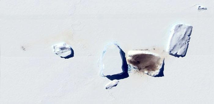 Zwischen Eisbergen gegen Kälte und Sturm geschützt, befindet sich diese Kaiserpinguin-Kolonie auf dem Packeis beim Mertz Gletscher in der Ostantarktis.