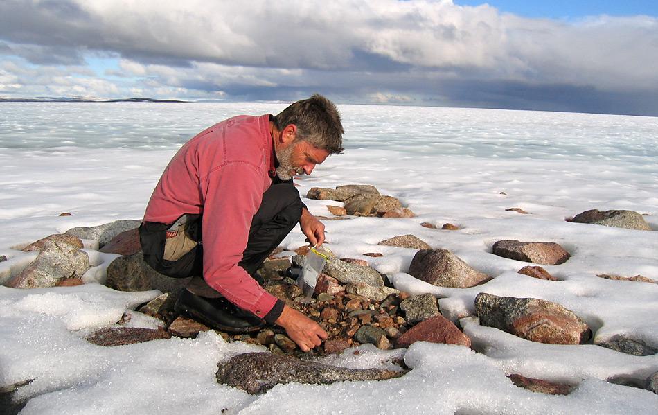 In der Antarktis werden noch heute Zeugen aus der Warmzeit der Antarktis gefunden.