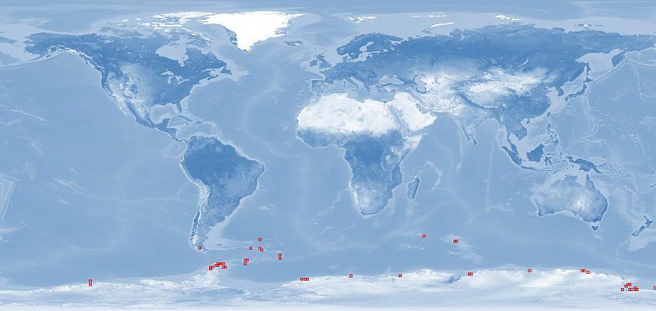 Die Laternula elliptica lebt im südlichen Ozean, rund um die Antarktis und an der Südspitze von Patagonien. It is usually found in shallow waters but the greatest depth at which it has been recorded is 360 metres (1,180 ft). [ 5 ] It is found living in soft substrates such as muddy sand and gravel in which it burrows deeply. Die Muschel wird normalerweise in flachen Gewässern gefunden, kommt aber bis in Tiefen von 360 Meter vor.