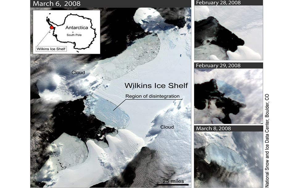 Die massiven Abbrüche im Wilkins Ice Shelf sind höchstwahrscheinlich auf die Wassererwärmung bei der Antarktischen Halbinsel zurückzuführen.