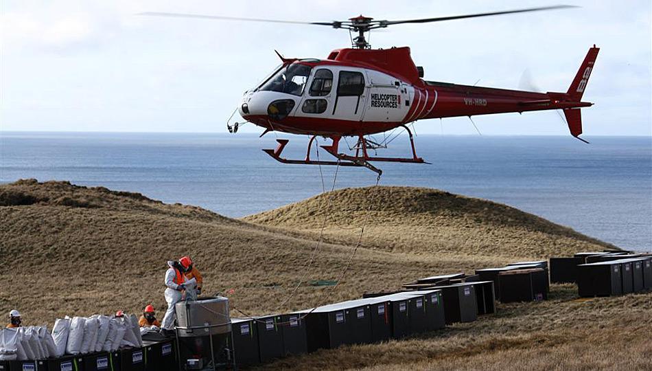 Zwischen 2010 und 2011 wurden mit Hubschrauber auf der gesamten Insel Giftköder abgeworfen.