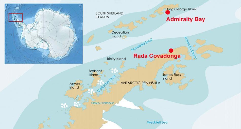 Während sich die Kolonie «Admiralty Bay» auf King Georg Island liegt, befindet sich die Kolonie «Rada Covadonga» auf antarktischem Festland.