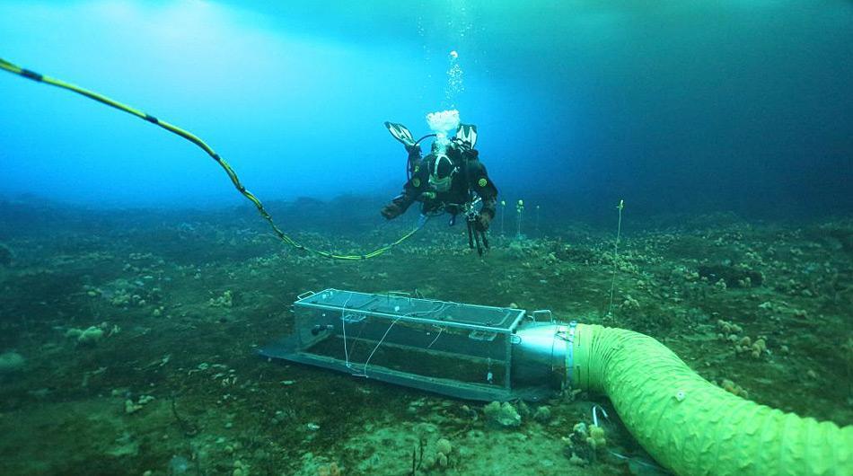 Die Schläuche führen das angereicherte Wasser in die Kammer und exponieren so die Organismen den höheren CO<sub><noscript><img class=