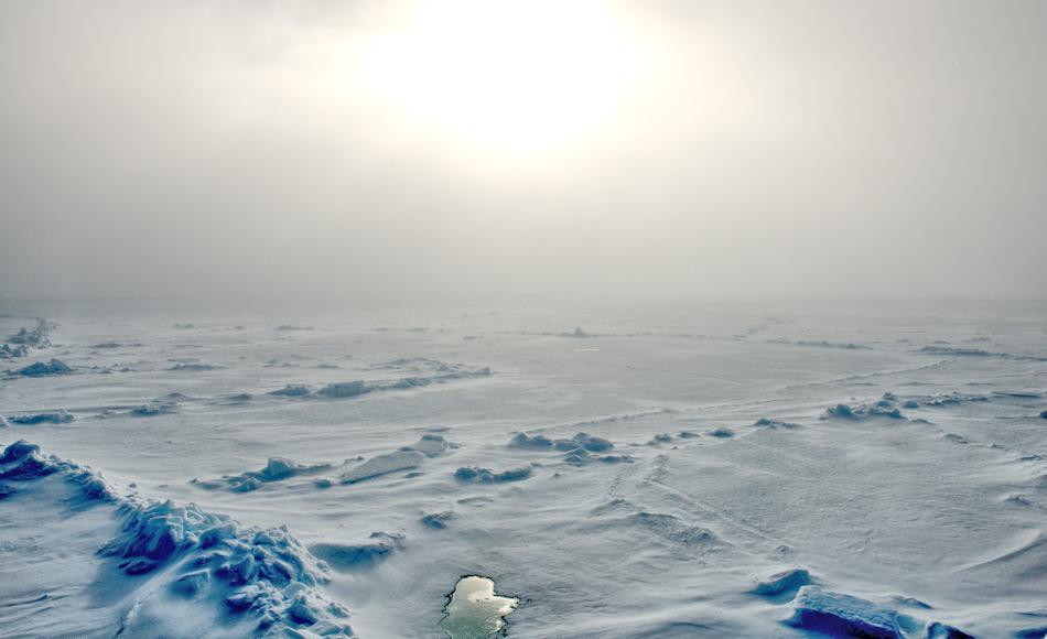Die Meereisbildung ist ein wichtiger Bestandteil der Arktis und bietet Lebensraum für Robben, Eisbären und viele Meeresvögel über dem Wasser. Doch auch unter Wasser sind viele marine Organismen von diesem jährlichen Prozess abhängig. Bild: Michael Wenger