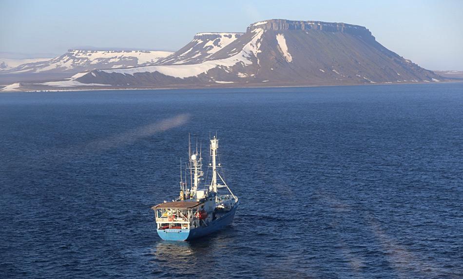 Die Suche nach Eisbären wird hauptsächlich mit Schiffen durchgeführt, da die Inseln zu weit auseinander liegen und zu isoliert sind, um die Aufgabe nur durch Luftüberwachung durchzuführen. Foto: Magnus Andersen, der Norwegian Polar Institute