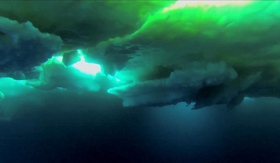 Unter dem Meereisdeckel der östlichen Arktis könnten mehr als neun Milliarden Polardorsche leben. Foto: AWI