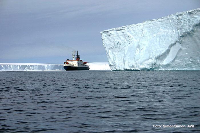 Polarstern-Eisberge