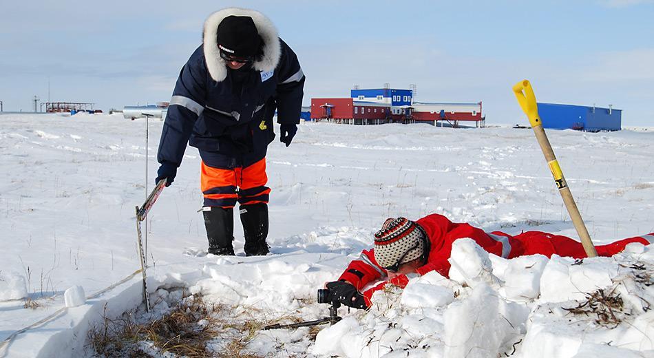 Hanno Meyer (AWI, in blau) und Martin Proksch (WSL-Institut für Schnee- und Lawinenforschung SLF, Davos in rot) beim Dokumentieren eines Schneeprofils in der polygonalen Tundra auf Samoylov. Foto: Thomas Opel, AWI