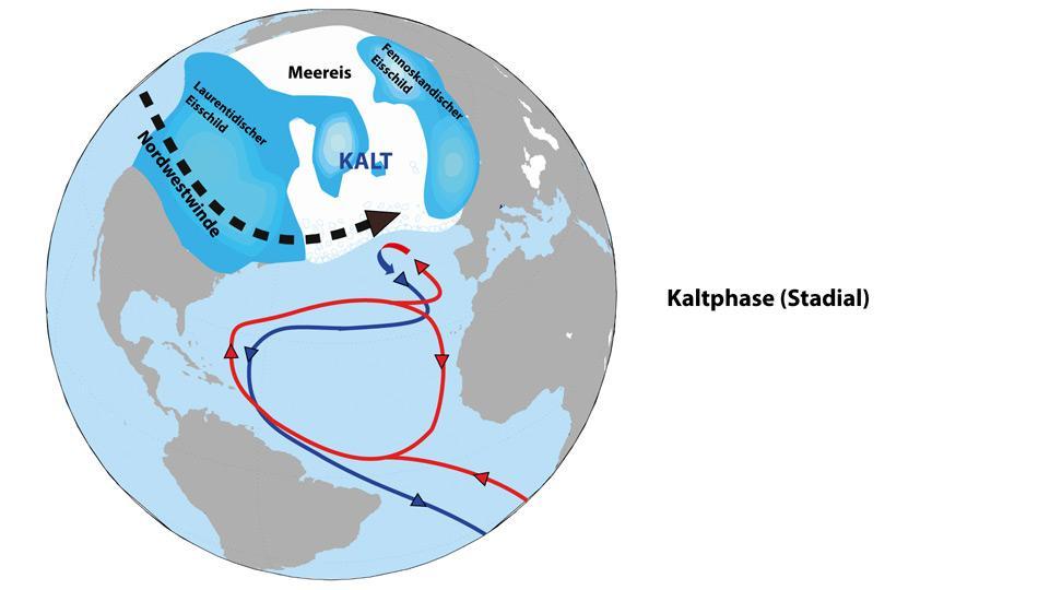 Die Nordhalbkugel im «Stadial» (Kaltphasen) In der eiszeitlichen Kaltphase bedeckten riesige Eisschilde den Norden Amerikas und Europas. Starke Nordwestwinde trieben das arktische Meereis bis zur französischen Küste hinunter. Weil der ausgedehnte Eisdeckel auf dem Nordatlantik den Wärmeaustausch zwischen Luft und Meer unterband, fehlte den Meeresströmungen die starke Antriebskraft wie unter heutigen Bedingungen. Die Ozeanzirkulation als mächtiges Förderband der Weltmeere war deshalb sehr viel schwächer ausgeprägt als in der Gegenwart und transportierte nur wenig Wärme in den Norden.