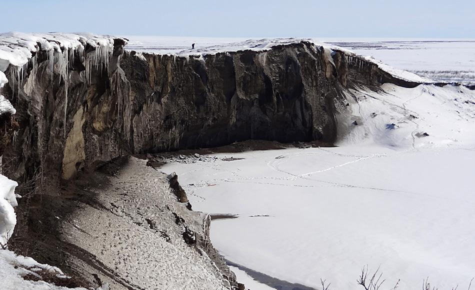 Blick auf die 35 Meter hohe und 680 Meter lange Steilwand (Permafrost-Aufschluss) am Itkillit River im Norden Alaskas. Foto: AWI, Jens Strauss