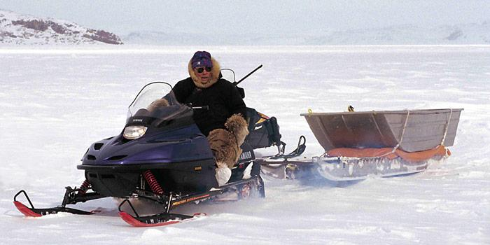 Inuit-Jaeger