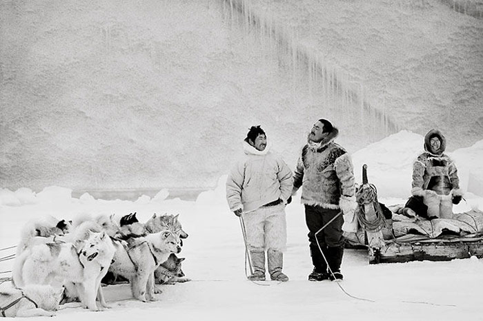 Husky-Inuit